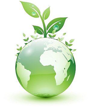Green Oil Change Boston - Sustainable Auto Repair Boston