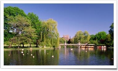 Somerville Sustainability - Boston Green